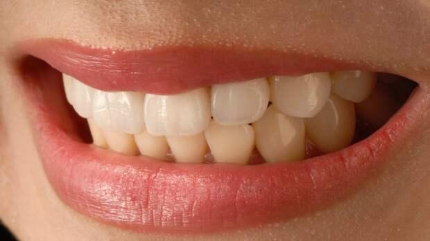 Стоматолог Артемов рассказал о правильном выборе зубной пасты