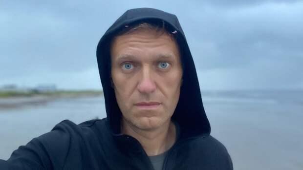 Призывы иноагентов выйти в поддержку Навального показали свою неэффективность