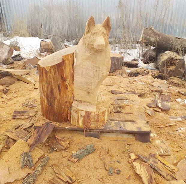 Собака из дерева бензопилой - настолько реалистично, что кажется, сейчас залает! Резьба по дереву, Бензопила, Скульптура бензопилой, Воронеж, Деревянная скульптура, Своими руками, Искусство, СМИ, Позитив, Длиннопост, Рукоделие с процессом, Александр Ивченко