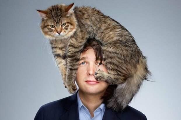Муж сказал: «Никаких котов в доме!». Что было дальше?