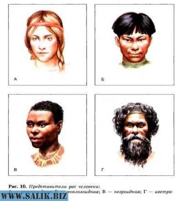 Сообщение на тему основные расы. Человеческие расы
