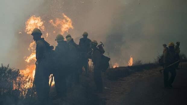 Природные пожары в США уносят все новые жизни