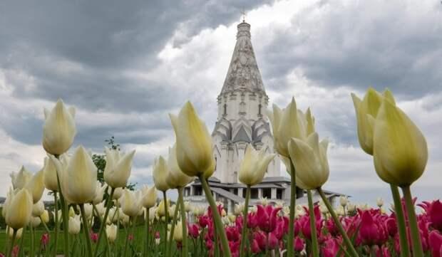 В столице приступили к высадке тюльпанов