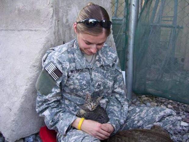 В 2008 году Боулдин служила в Афганистане  афганистан, животные, кошка