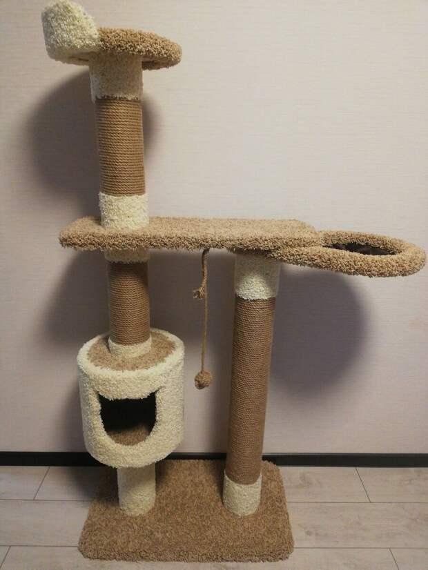 Домик для кота: радость хозяину или расточительство