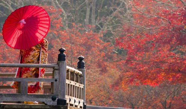 A-geisha-stands-on-a-wooden-bridge-in-Nara_165890177 (800x411, 438Kb)