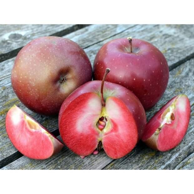 Красномясые яблочки
