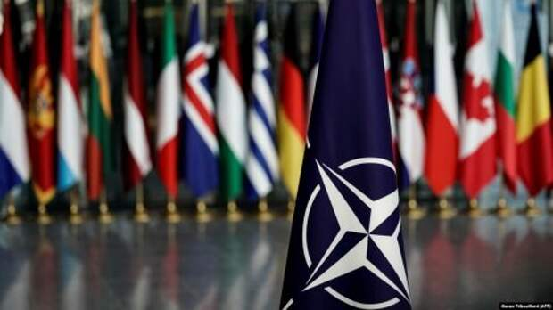 Зеленский ждёт «мощный сигнал» от НАТО