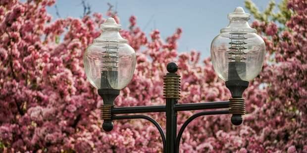 Более 70 фонарей установят в Савеловском
