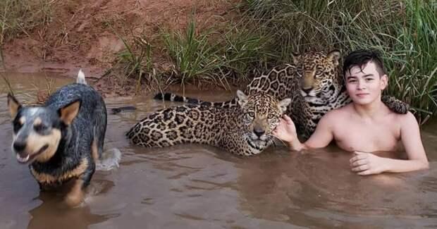 Тьяго Силвейра – бразильский мальчик, живущий с ягуарами