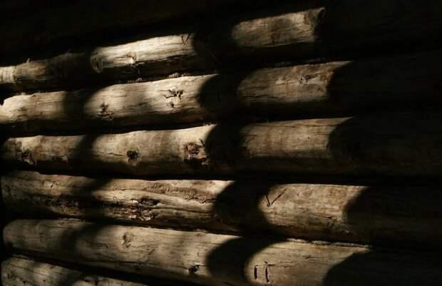 Проснулся - ничего не понимаю. Стены бревенчатые, на лавке тряпка, на тряпке я.