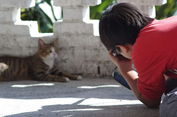 Фотографирование кошки в городке Хутонг, Тайвань. | Фото: flickr.com.