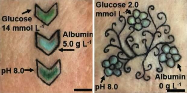 Тату настраже здоровья: немецкие ученые создали биосенсорные татуировки