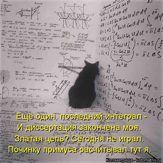 kotomatritsa_ne (604x604, 243Kb)