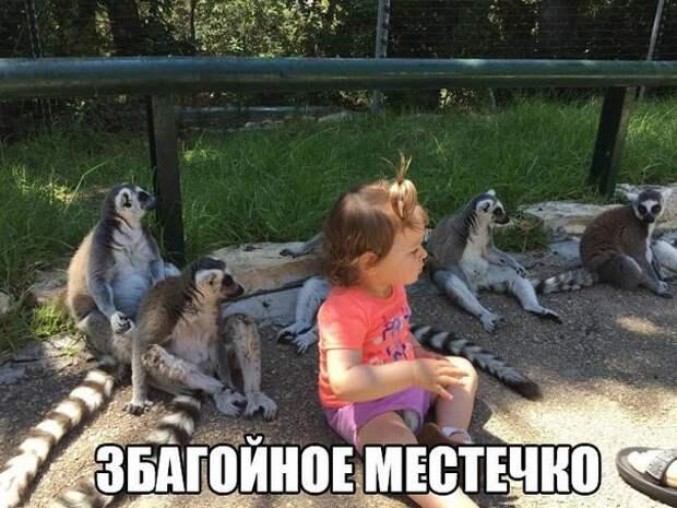XFrkti_KBJo