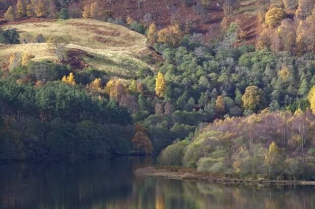 Река Тей осенью