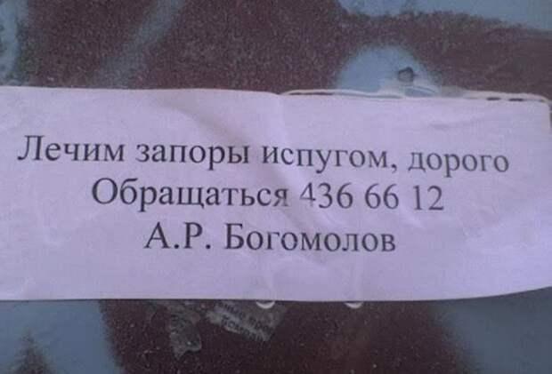 1453971838_medfotoprikoly-18