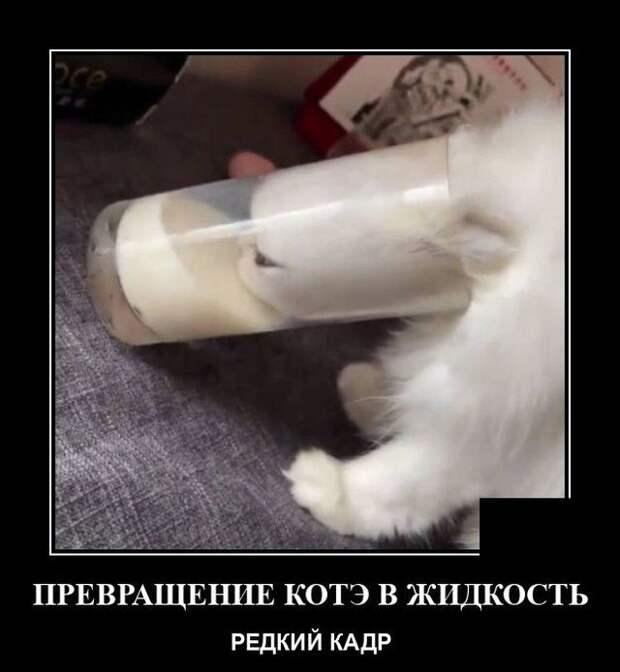 Демотиватор про жидкость
