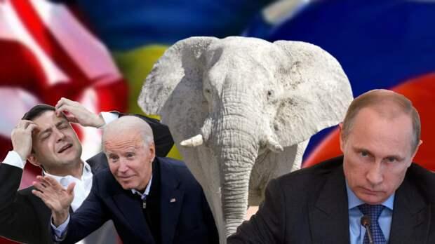 Украинский «белый слон»