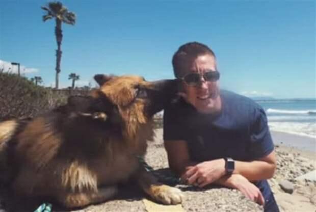 Бездомный пес, просидевший на цепи много лет, заплакал от счастья, когда впервые увидел океан