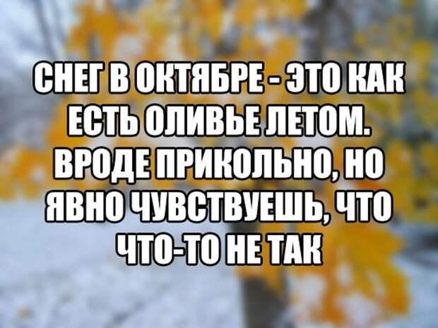 1477984420_88