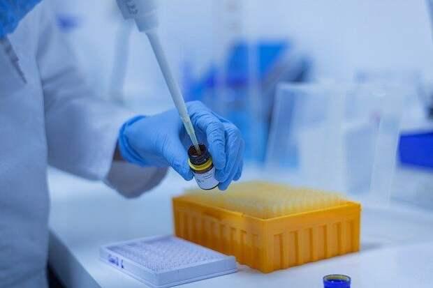 Иммунолог обозначил группу риска по повторному заболеванию COVID-19