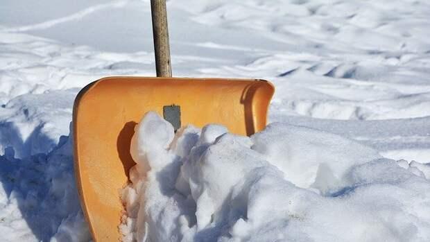 Снежные кучи вывезли со двора дома на Луговом проезде