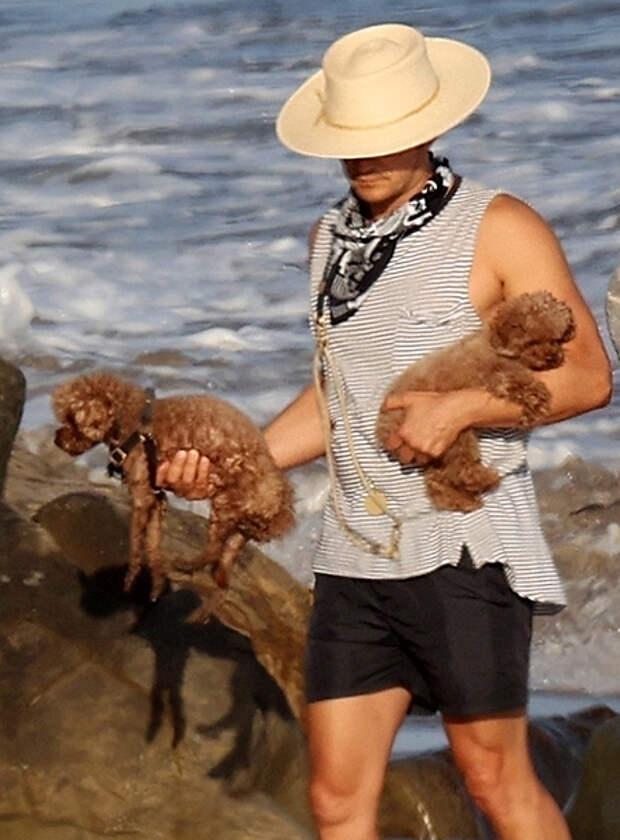 Пара с собачками: Кэти Перри и Орландо Блум прогулялись по пляжу Санта-Барбары