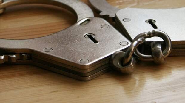 Банда из шести человек похитила иностранца и попалась полиции в Подмосковье