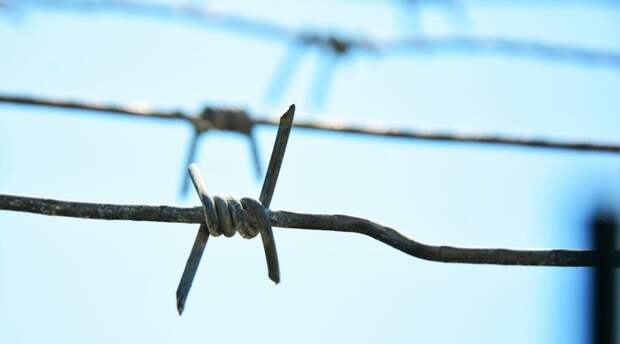 Два жителя Керчи проведут в колонии более семи лет за торговлю наркотиками