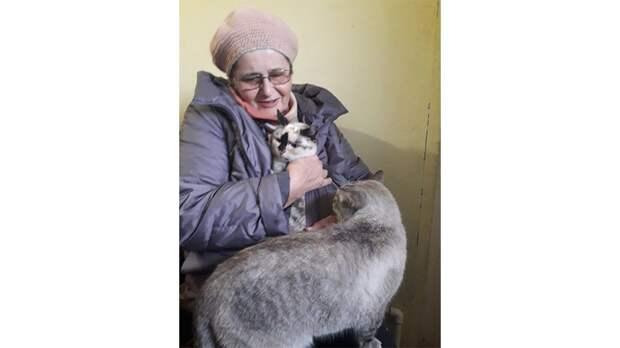 Костромская кошка