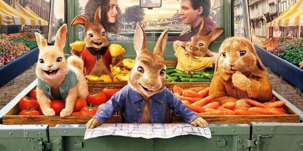 «Кролик Питер 2» оказался не так прост