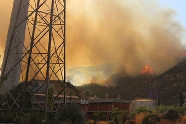 В результате лесных пожаров в Турции произошло возгорание ТЭЦ