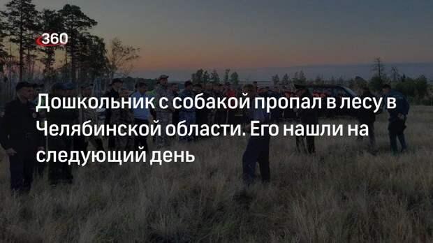 Дошкольник с собакой пропал в лесу в Челябинской области. Его нашли на следующий день