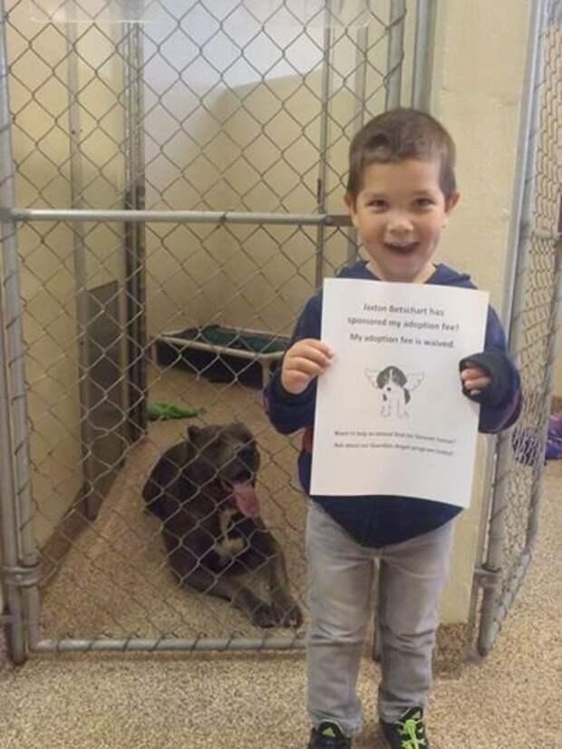 Ему всего 4 года, но его сердце разбилось, когда родители сказали, что нельзя завести этого пса