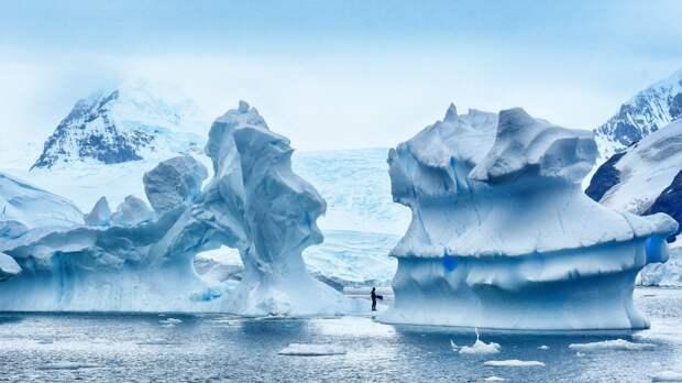 Лучшие фотографии уходящего года от всемирного агентства новостей! интересно, лучшие, фото