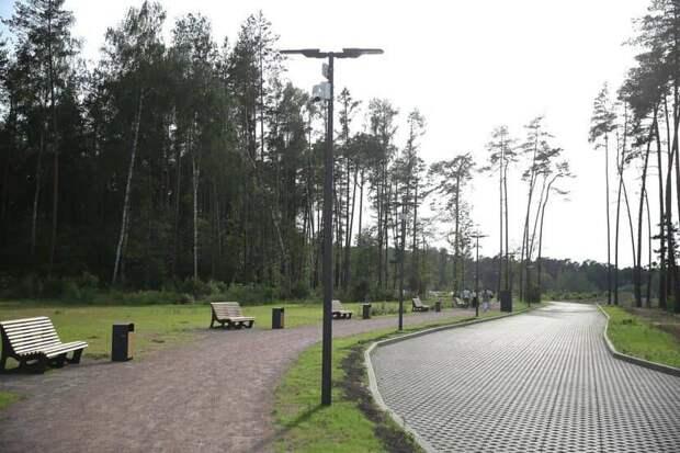 Полсотни новых парков создадут в лесах Подмосковья. Заботу о природе соединят с комфортом для людей