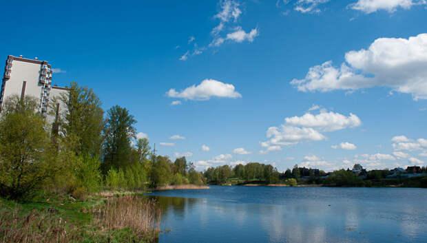 Погода без осадков и до плюс 18 градусов ожидается в Подольске в понедельник