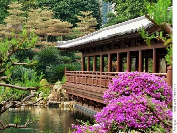 Китайский ландшафтный дизайн в стиле династии Танг