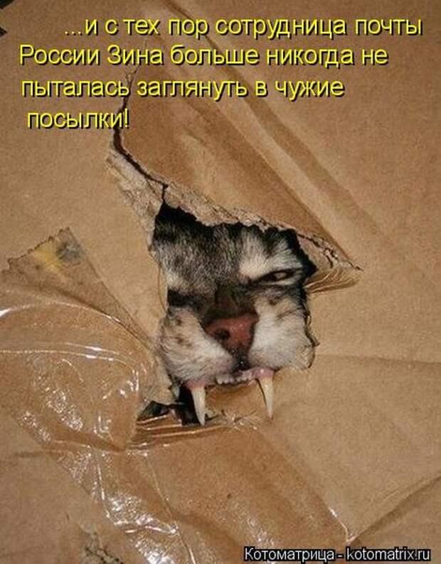 1464560164_04