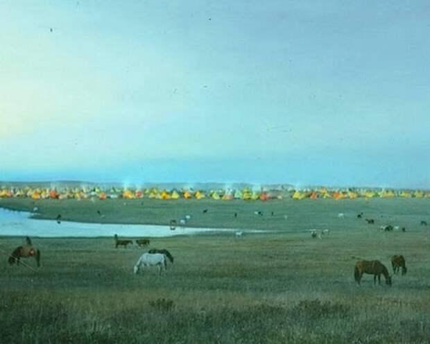 Пасущиеся лошади возле стойбища племени черноногих, Монтана, начало 1900-х.