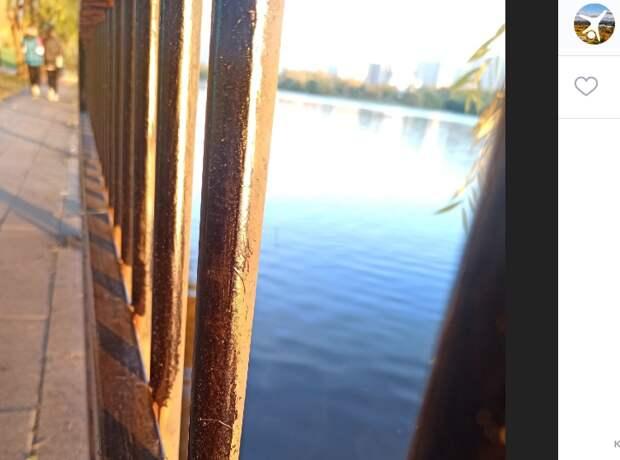 Ограждение набережной в парке Марьина перекрасят до 11 октября – Департамент ЖКХ