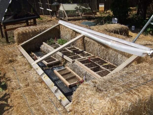 Органическое земледелие, пермакультура: соломенная теплица