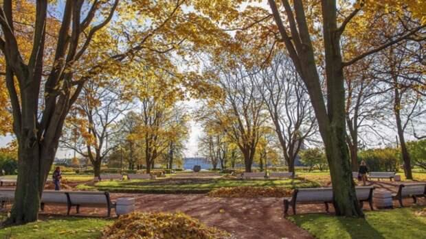 В Екатеринбурге мужчина устроил резню в парке