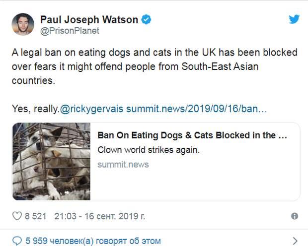 Британия скатывается в варварство: от поедания собак к каннибализму?