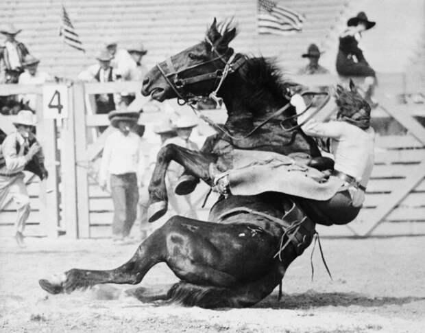 6 эпичных фото женщин-ковбоев на Диком Западе