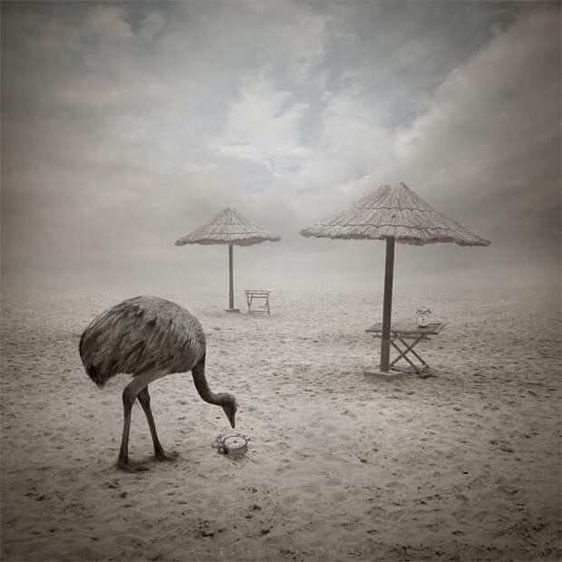 Сюрреалистические миры на снимках Лежека Бужиновски