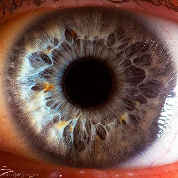 eye-macro-photo-4