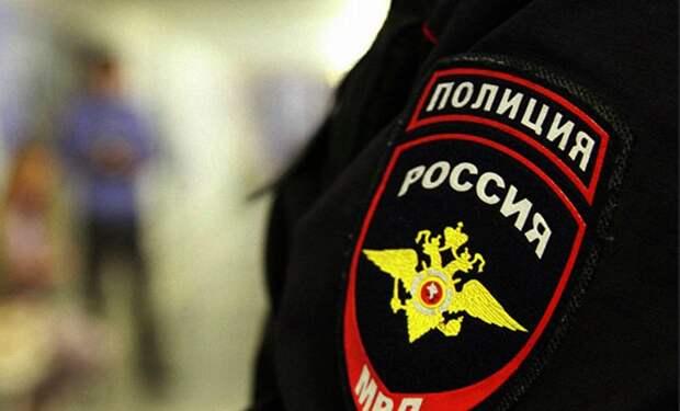 В Москве мужчина ударил полицейского и натравил на него собак
