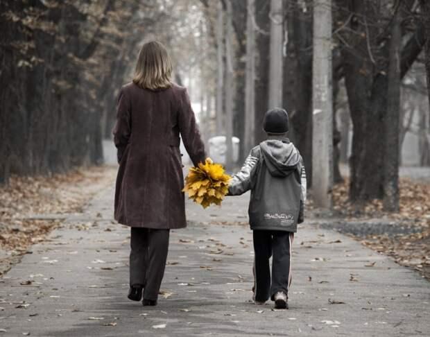 За что любить мам ?